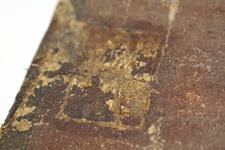Thumbnail image of Rear of Pavise bearing the arms of Zwickau, Bohemian, mid 15th century (V.1)