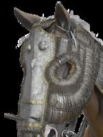 Thumbnail image of horse armour (bargustawan)