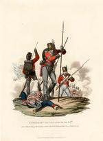 Thumbnail image of A sergeant and privates of the 87th or Prince of Wales's Own Irish Regiment on service, 1812. Aquatint by J C Stadler after Charles Hamilton Smith. London, published  January 1813 by Colnaghi & Co. 23 Cockspur Street.