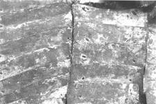 Thumbnail image of Brigandine