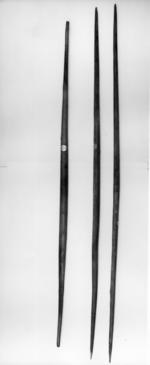 Thumbnail image of Long bows recovered from the wreck of the Mary Rose sunk in 1545. English, mid 16th century
