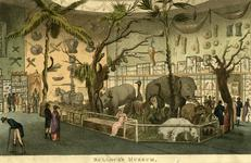 Thumbnail image of Print Coloured engraving:  'Bullock's Museum'.