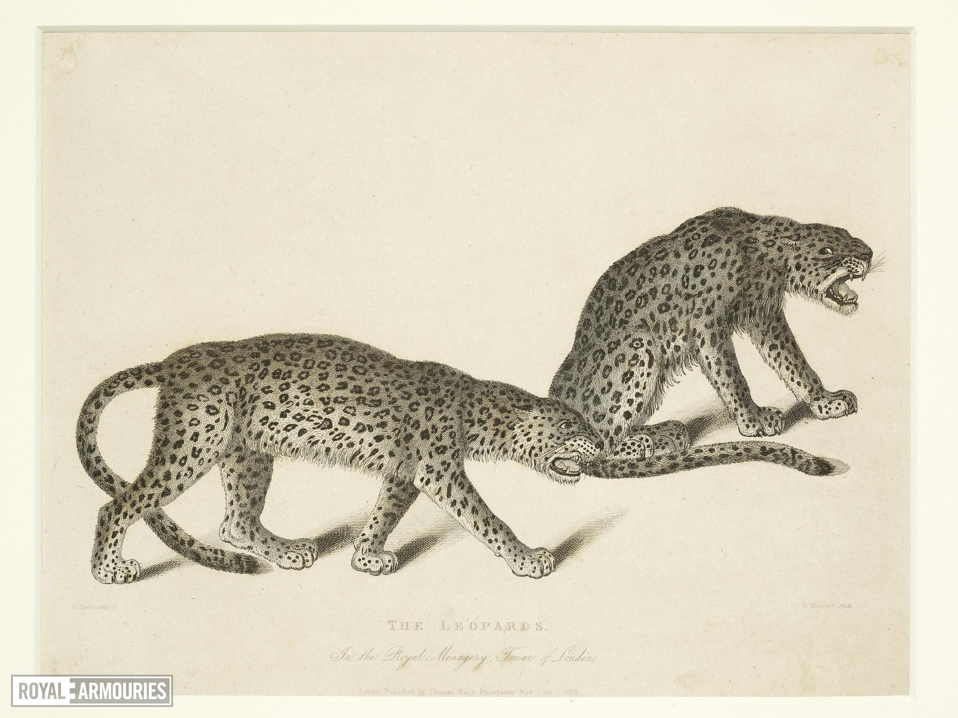 Print Entitled 'The Leopards in the Royal Menagery, Tower of London', dated 1 June, 1829.