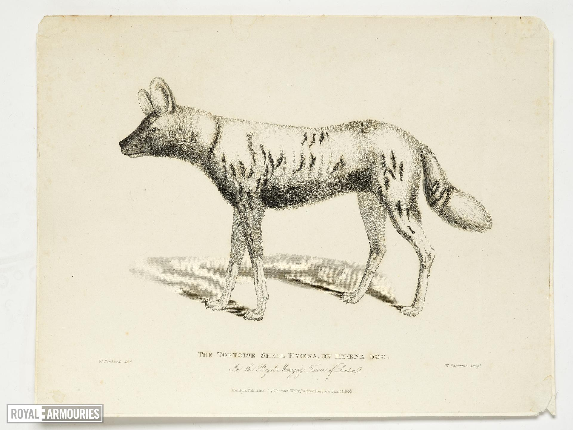 Print Entitled 'The Tortoiseshell Hyaena in the Royal Menagery, Tower of London', dated 1 January, 1830.