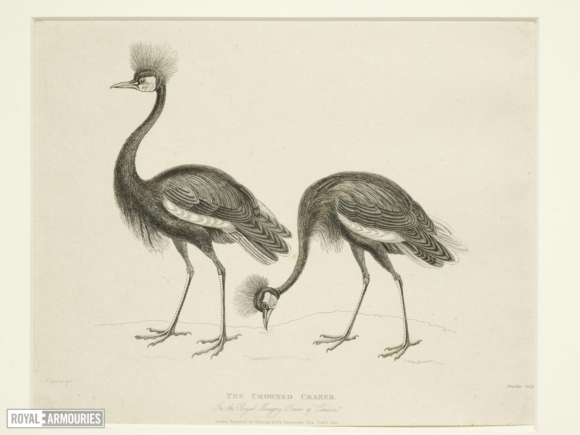 Print Entitled 'The Crowned Cranes in the Royal Menagery, Tower of London', dated 1 February, 1830.