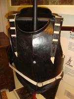 Thumbnail image of Armour on the damaged mount at the Curtis Museum.