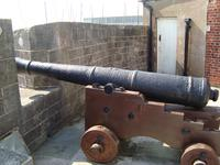 Thumbnail image of The gun on display at Calshot Castle.