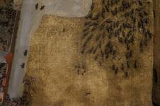 Thumbnail image of XVIII.82.4 top after conservation